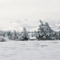 Ай-Петринская яйла зимой :: ale uro