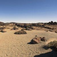 National park Teide :: Lena Li