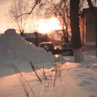 Зимний закат :: Наташа Кошкина