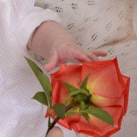 Мой сын дарит цветок своей невесте :: Алия Тимонина