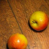 Это любовь? или просто яблок хочет яблоню, яблонуть.. :: Роман Романов