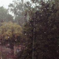 Heavy rain :: Anton Pronoza
