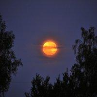 За облаками :: Андрей Куприянов