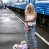 Дама с собачкой :: Алёна Савина