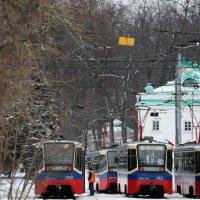 столичные трамвайчики на обеде :: Олег Лукьянов