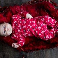 Ника 1,5 месяца :: Alena Pilyasinskaya