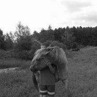 ..Лошадь.. :: Vladimir Sv