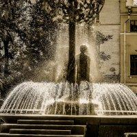 Солнечный душ :: Михаил Букреев (NYIP)