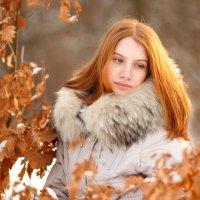 Зима тоже бывает теплой :: Анна Димант