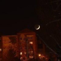 Луна 25.11.14 :: Татьяна Гайтерова