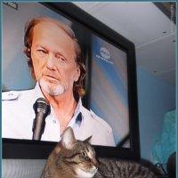 Кот и Миша... :: vadim