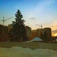Новые дома. :: Валерий Молоток