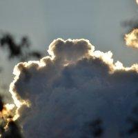 облака :: Светлана