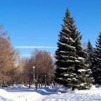 мороз и солнце-день чудесный :: Ирина ***