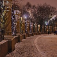 Кружевной узор оград. :: Ирина Нафаня