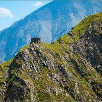 В горах Чечни :: Сергей Величко