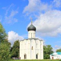 Церковь Покрова на Нерли. :: Александр Кореньков