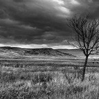 Осень :: Анатолий Мигов