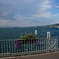 Лето в Женеве... :: Алёна Савина