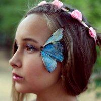 Крылья бабочки :: Катерина Морозова