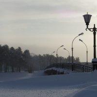 Морозно... :: Диана Мелина