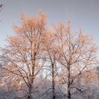 восход солнца :: Лариса Батурова