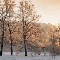утро в городе :: Лариса Батурова