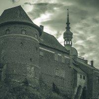 Замок Фромборк :: Игорь Вишняков