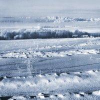 Снегозадержание :: Валерий Талашов