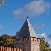 Смоленская крепость. Воронина (Безымянная, Малая четырёхугольная) башня :: Алексей Шаповалов Стерх
