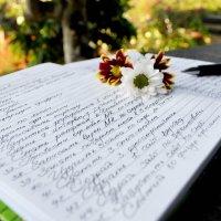 Дневник для 100 целей :: Венера Чернышова