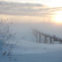 Теплотрасса :: Sergey Apinis