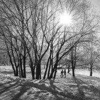 Январь :: Алексей Окунеев