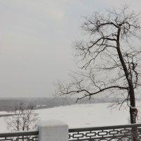 Туманная даль :: Валентин Котляров
