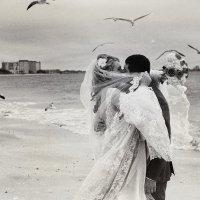 свадебное фото :: Valentyn Semenov