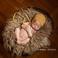Красивые фотографии первых дней жизни малышей в Краснодаре и крае :: Евгения Гапонова