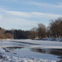 Алтай  в  январе :: Людмила
