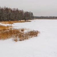 Озеро :: Vitalij P