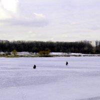 На озере :: Владимир Болдырев