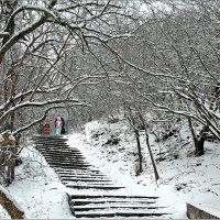 Зимняя дорожка :: Александр Смольников