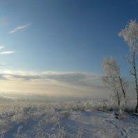 Морозная тишина. :: nadyasilyuk Вознюк