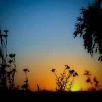 Летний закат :: Константин Филякин