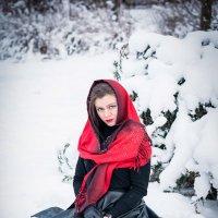 Зимняя красота :: Станислав Степанов