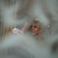 Свадьба :: Виталий Евдокимов