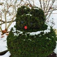 Снеговик.... :: Schbrukunow Gennadi