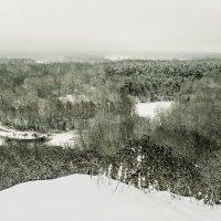 Глухозимье :: Vladimir Volkov