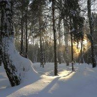 -38. Короче, холодно. :: Александр Гурьянов