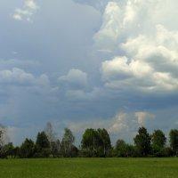 Ветер,непогода... :: nadyasilyuk Вознюк