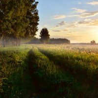 Уходи  туман... :: Геннадий С.