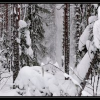 Зима :: Александр Тарута